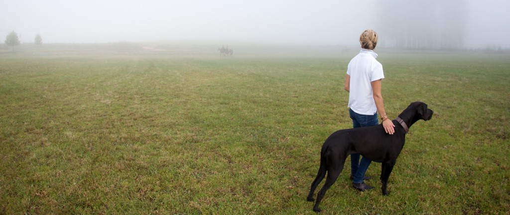 bset academy field mist